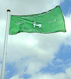 flag_250w